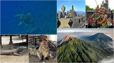 v-indonezijo-iz-zg-akcija-prikazna-slika