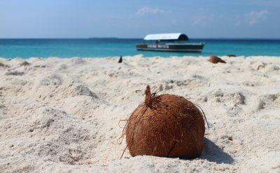 Zanzibar - jesen 2018 - prikazna slika